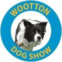 WDS logo blue